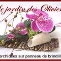 composition florale - orchidées et panneau de brindilles