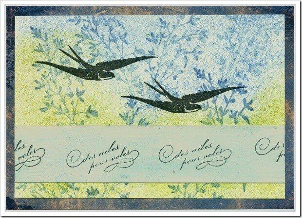 des ailes