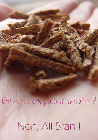 All_Bran_002_copie