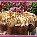 Gâteau meringué aux fruits rouge (5)