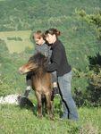 poneys_170511_024