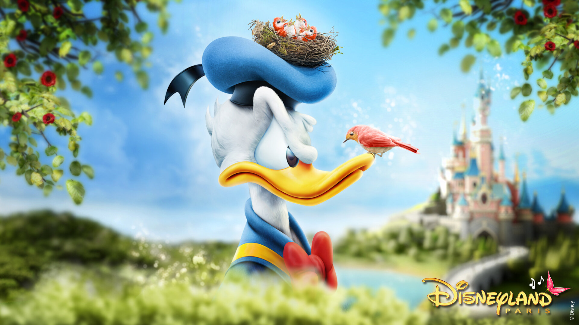 Happy Birthday Donald !