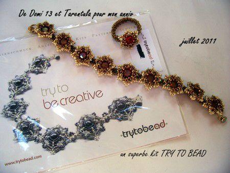cadeau Tarentula & Domi 13
