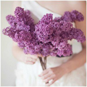 purple1111