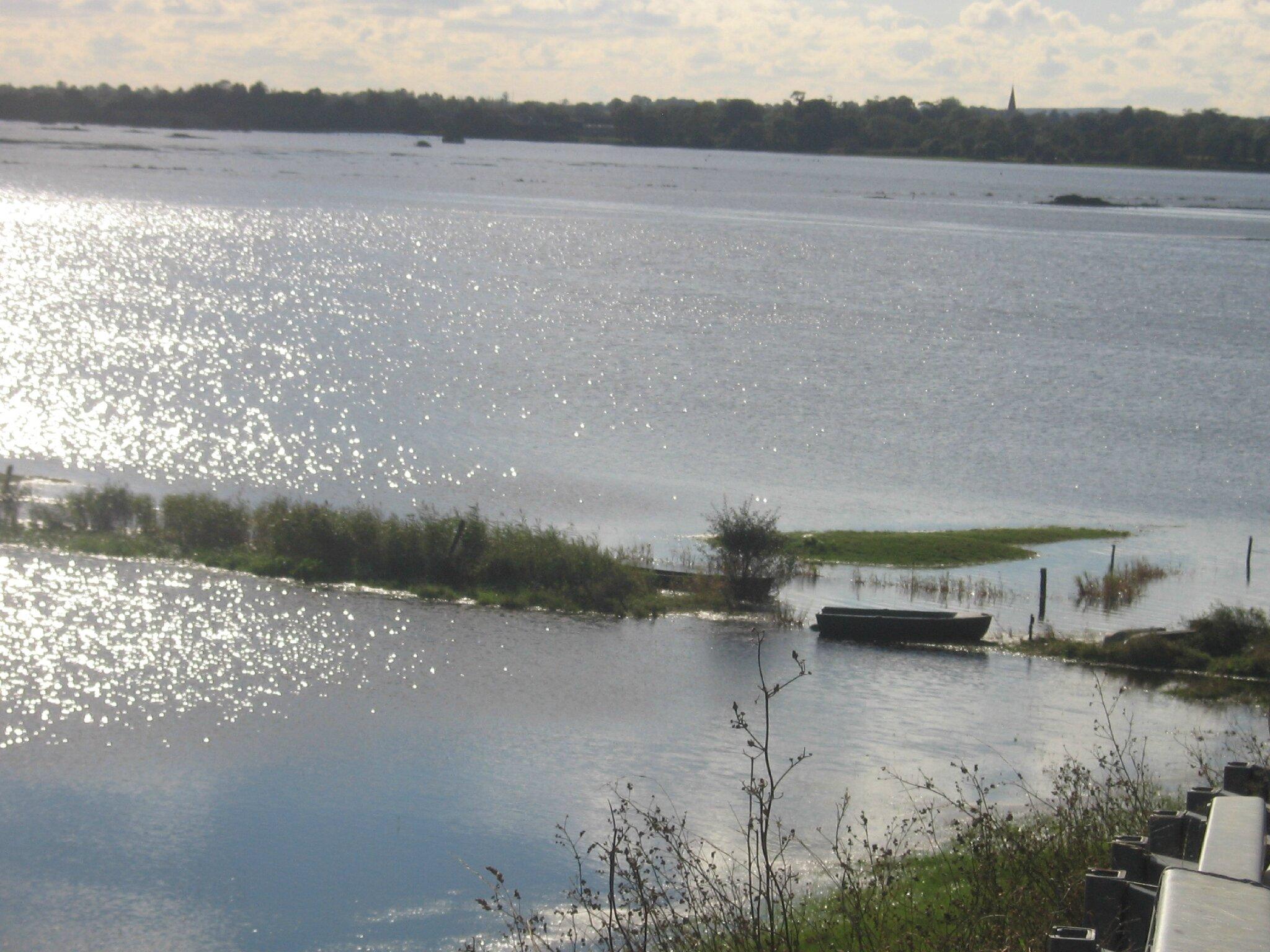 Le marais du Pommier Houesville 14 octobre 2012 033