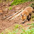 2014-05-30 LUX-1035