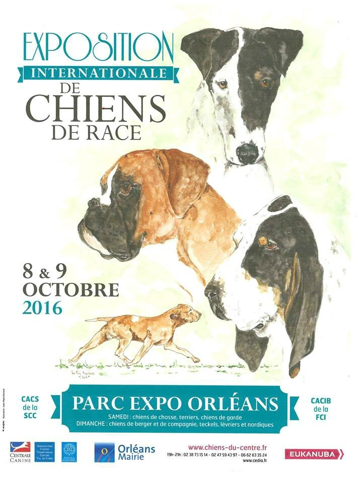 Exposition Canine: 8/9 Octobre 2016