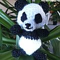 panda - SEPTEMBRE 2011