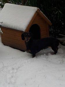 jour de neige 005