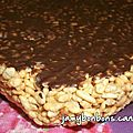 Carrés rice krispies - marschmallow - chocolat