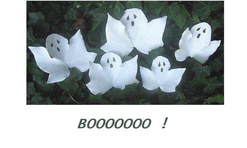 Bhooooo 1