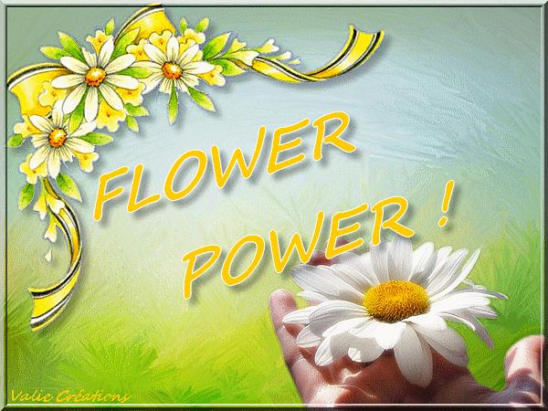 MESS FLOWER1