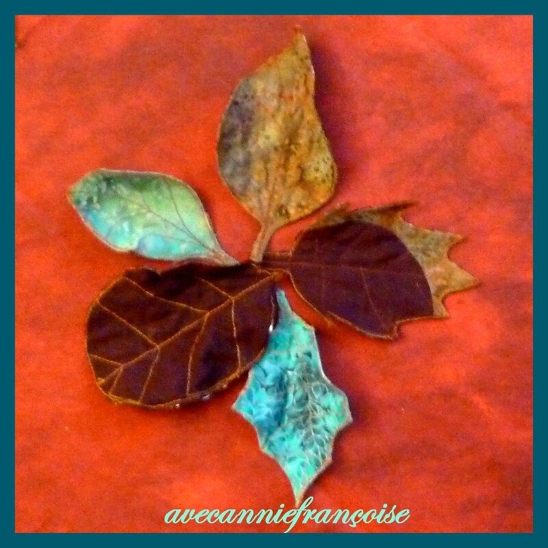 feuilles photo carrée