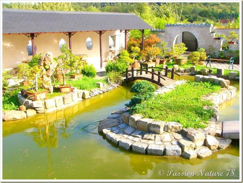 Le jardin Yili (24)
