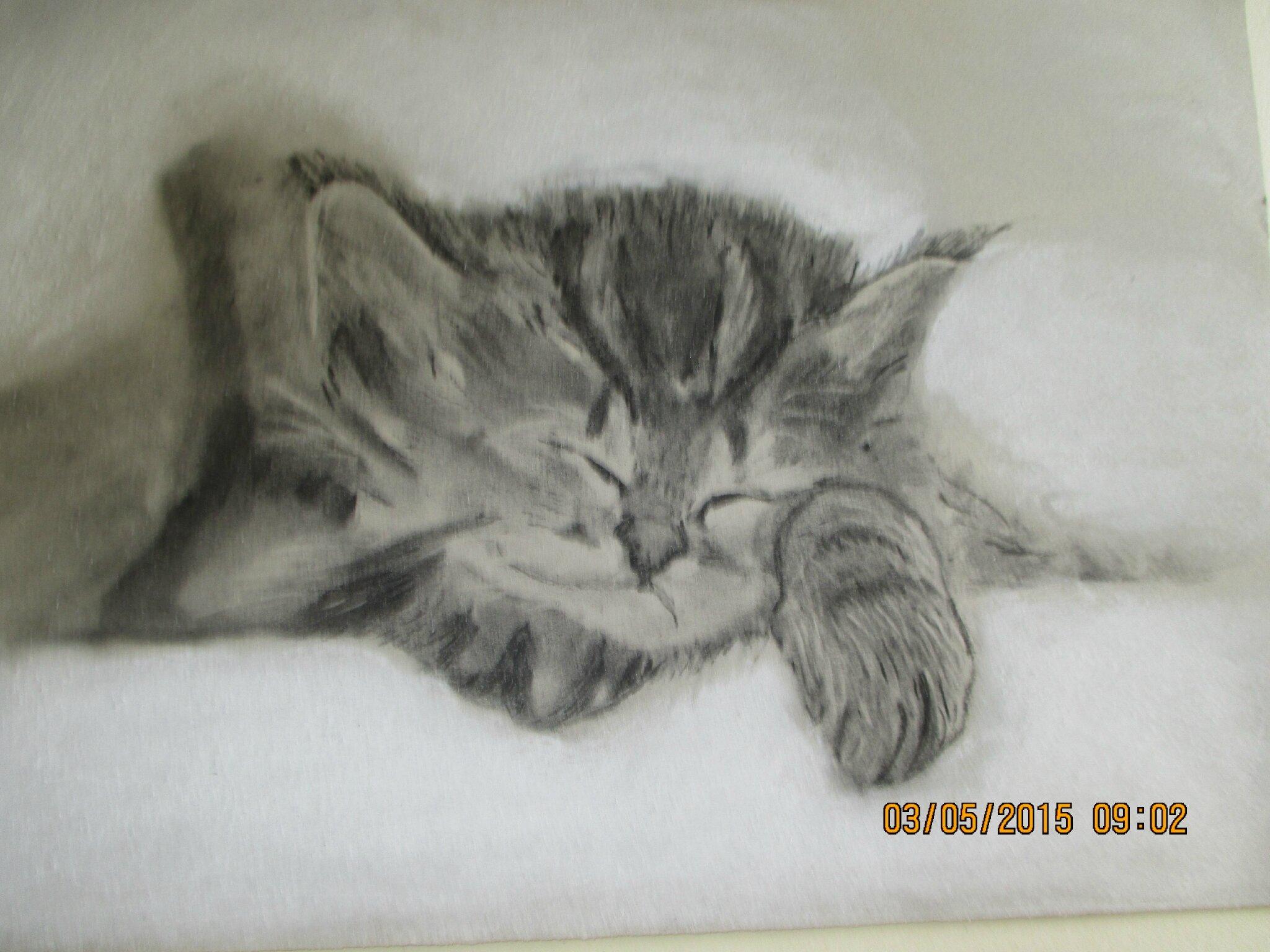 bonjour à vous tous, et toutes;Voici mon dernier dessin,si vous m'aimez dite le moi..grosses bises♥