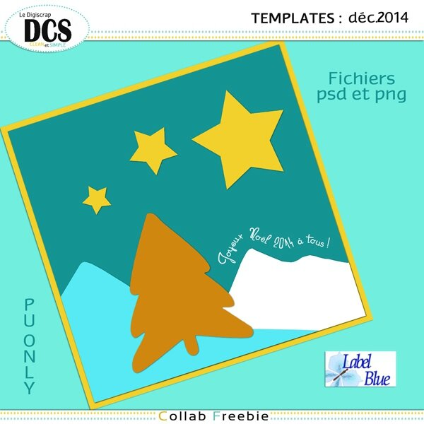 Blue Dcs template dec14 folfer