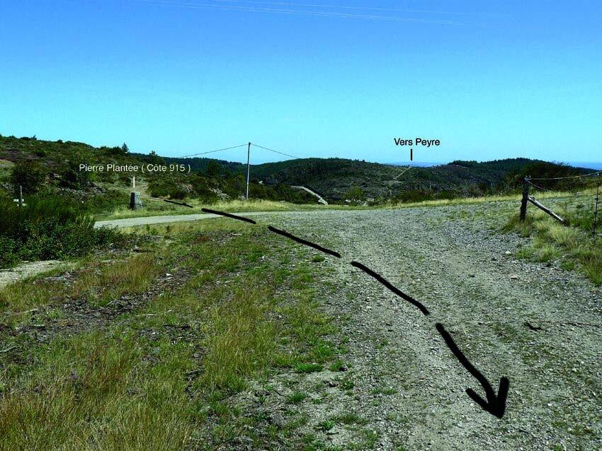 Le Chemin du Vin de la basse Ardèche au Puy ( suite 2 )