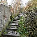 Wasmes - Rue Clémenceau - escaliers 1