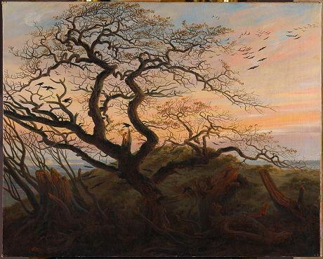 l_arbre_aux_corbeaux