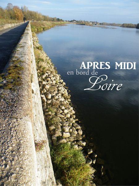 apr_s_midi_d_automne_en_bord_de_loire