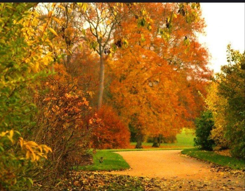 L'automne..