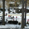 Patinoire Central Park - mars 2007