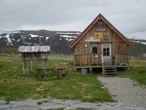 JOUR 15 Le cap nord !!! le 04-06-2011 (18)