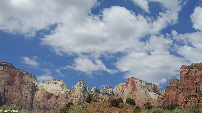 Zion NP 5