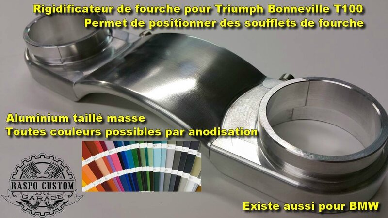 rigidificateur de fourche triumph