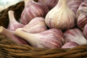 Red_Garlic_by_TheGreenFairy-300x200