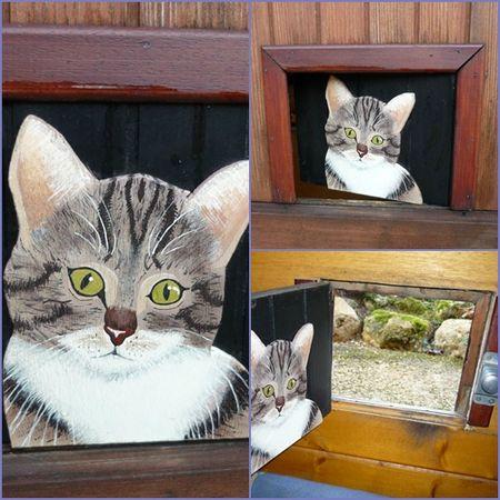 La chattière de Princess KHETI