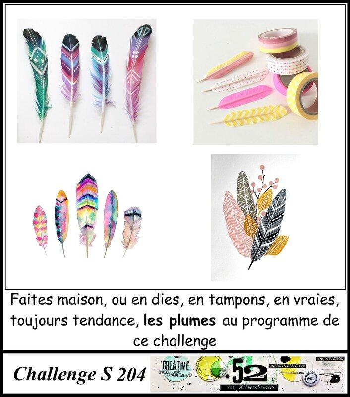challenge S204-plumes