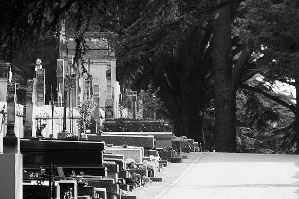 2008_09_10_Blois_1905nb_b_v