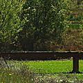 Lac d'Agès 29041623