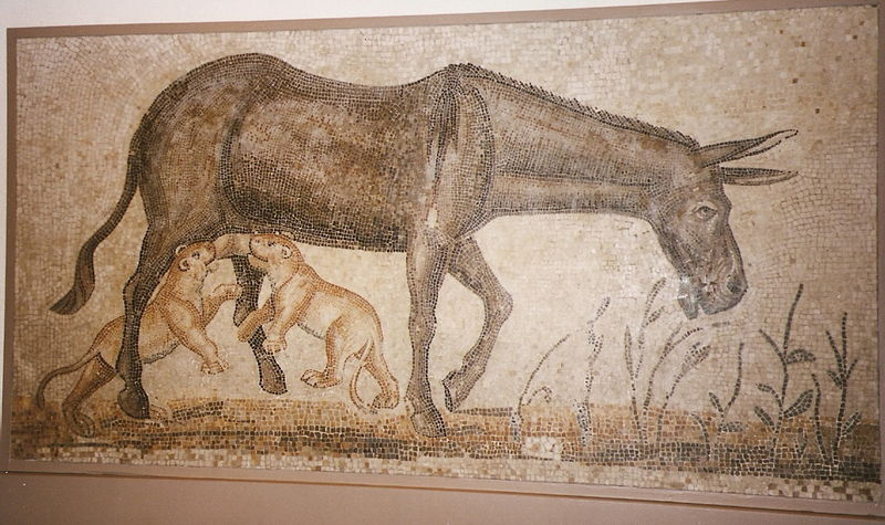 Mosaïque tunisienne - 140/240 av JC - Musée de Boston