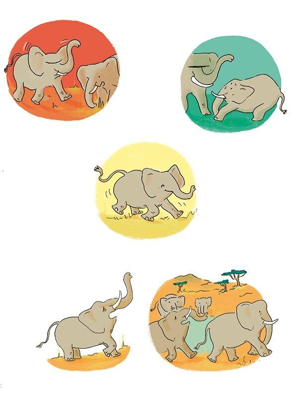 02-wapiti-elephants copy