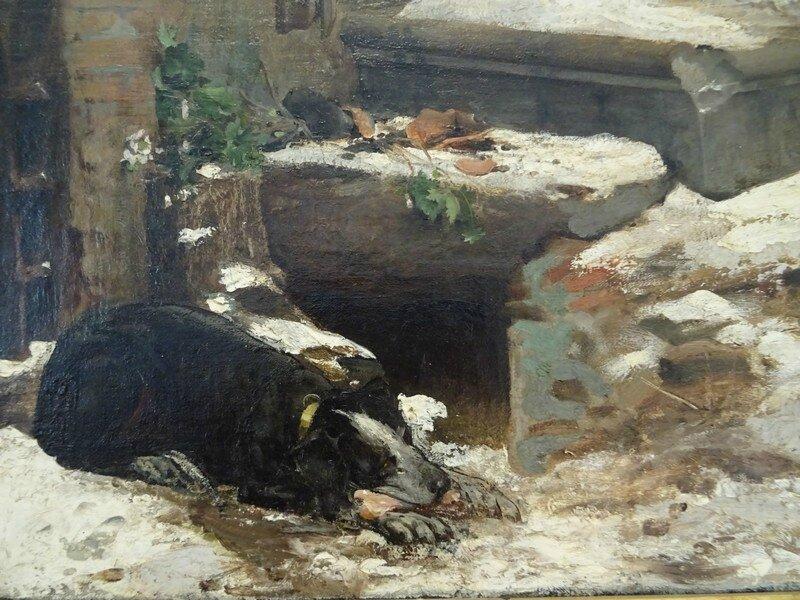 loup-d-agubbio-chien