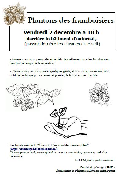 D'incroyables comestibles au lycée : plantation de framboisiers au LEM le 2 décembre 2016