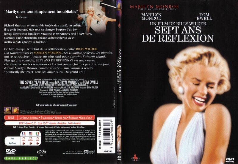 syi-dvd-france-jaquette-1
