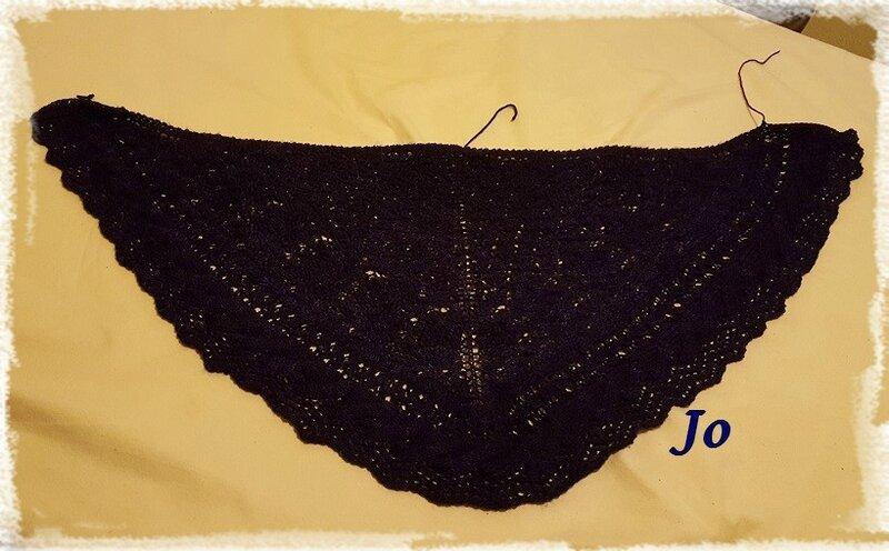 juneberry bleu violet (2)