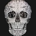 Garth Knight - Jewelled skull (vanitas), 2009. Photo LASSERON et LASSERON et Associés via Interenchères