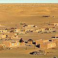 As saddadah, le dernier village fidèle à aicha kadhafi passe sous controle du conseil des tributs