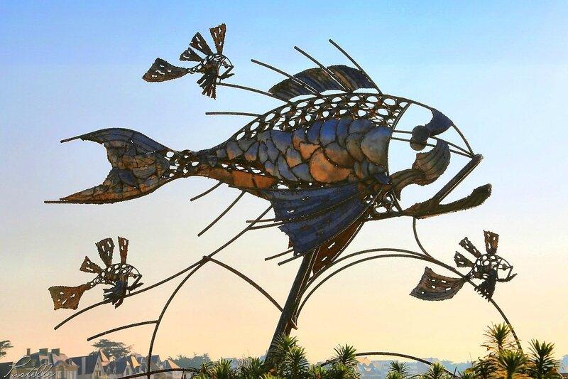 Maman poisson Quiberon_A99A6902b1