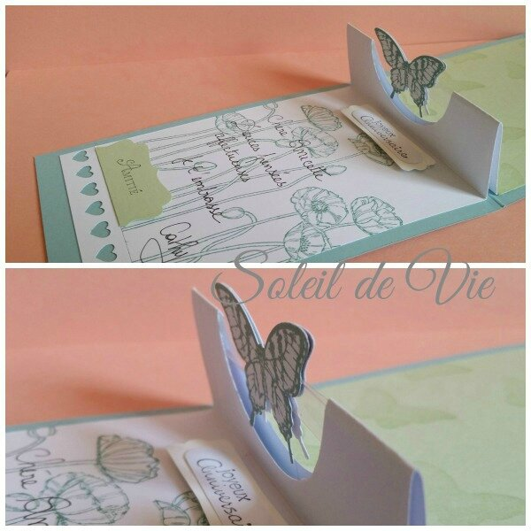 stampinup-carte3Dtoutsimplement-soleildevie