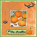 P'tiTs PoChoNs CiTrOuiLLeS PoUr HaLLoWeeN