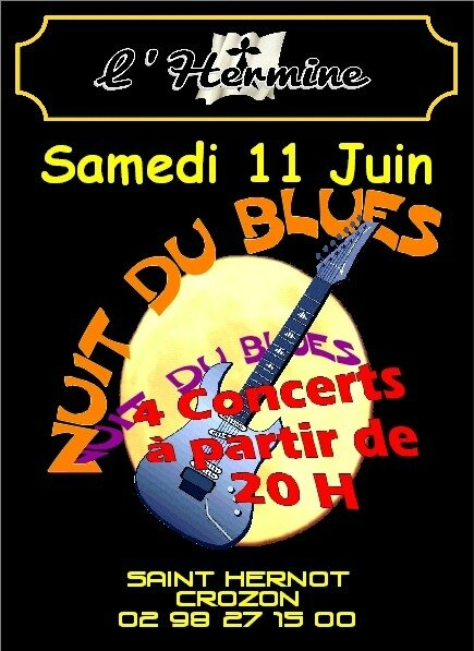 NUIT DU BLUES FLY recto