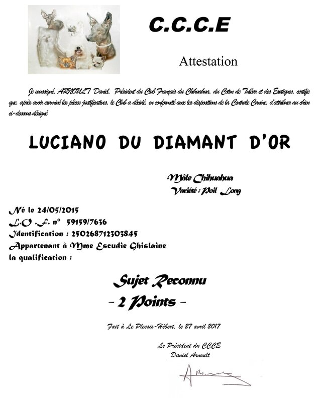 luciano-du-diamant-d'or