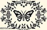 43Papillon