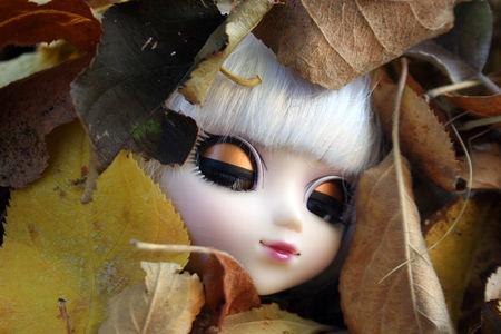 lucy_pullip_eos_automne