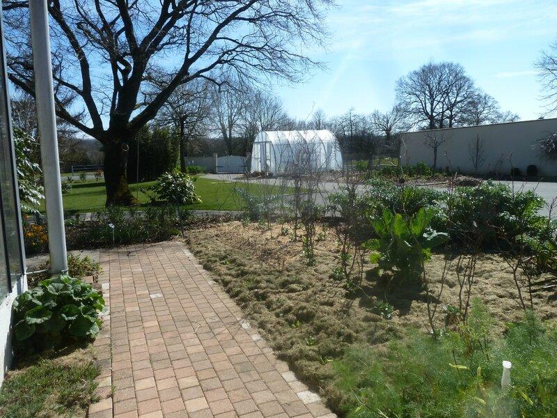 16-jardin ensoleillé (3)